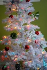 Adirondack Christmas Vacation Rental