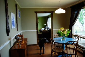 dog-friendly vacation rental
