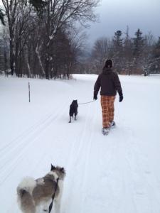 Adirondack snowshoeing
