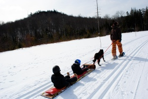 Family dogs sledding snowshoeing vacation Adirondacks NY